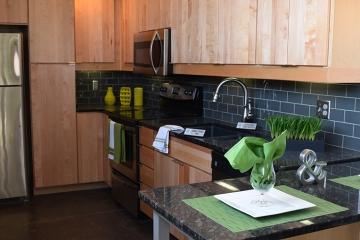 Plant 1 Apartments kitchen