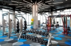Free weights and fitness equipment
